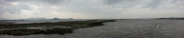 Deep Bay mudflats panorama