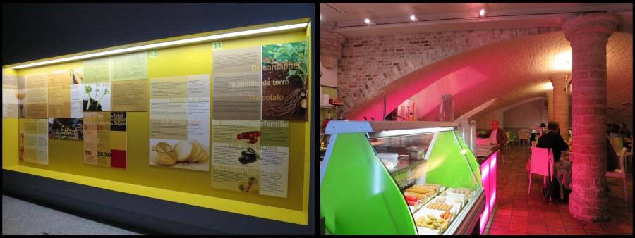 Visiter Bruges fauteuil roulant Musée frite 2