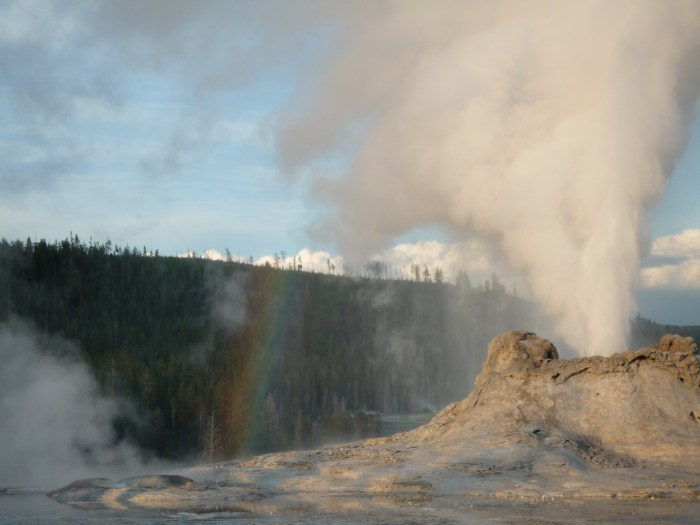 Ouest américain Yellowstone National Park Upper Basin Castle Geyser