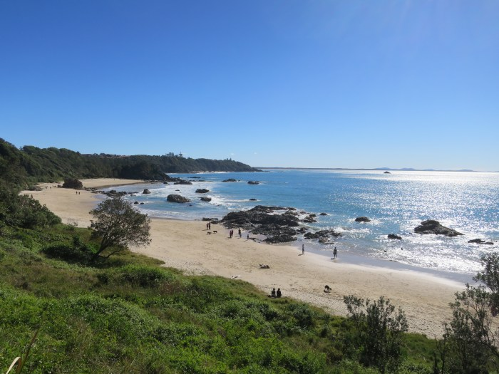 Port Macquarie coastal walk 7