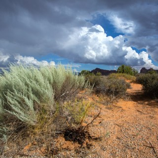 Hiking for the Non-Hiker: A Guide to Utah's National Parks