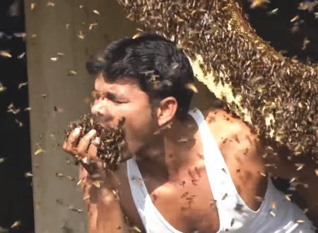 なにしてるのwww蜂蜜を愛しすぎておかしくなったインド人の異常行動がwww
