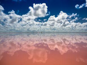 Różowa Laguna Las Coloradas, Meksyk