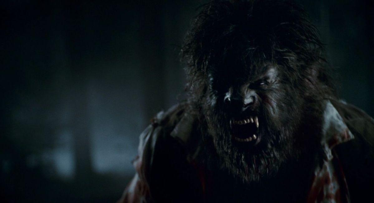 The-Wolfman-2010-image.jpg