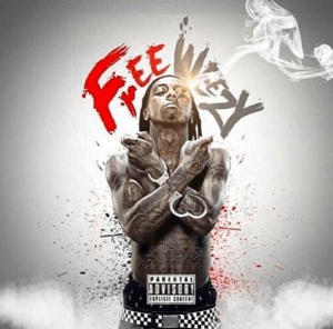 "The rumored ""Free Weezy Album"" cover art."