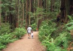 #68 - Arcata Community Forest