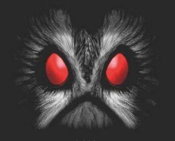 owlman7