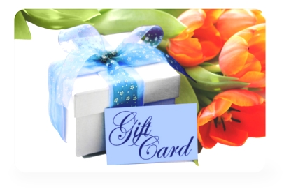 Blue Ribbon Gift Card