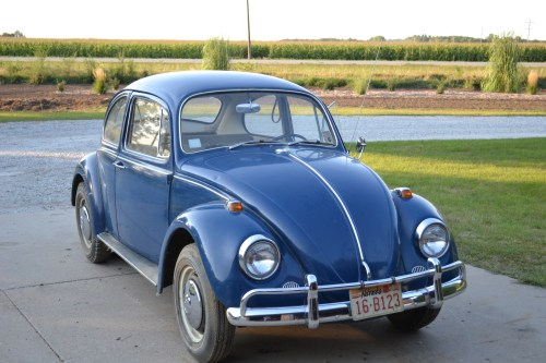 Featured '67 Beetle — Rees Klintworth