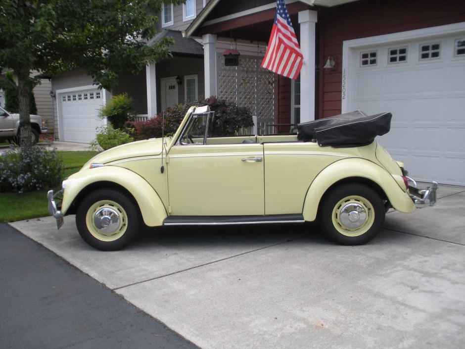 Featured '67 Beetle — Donna Fischer