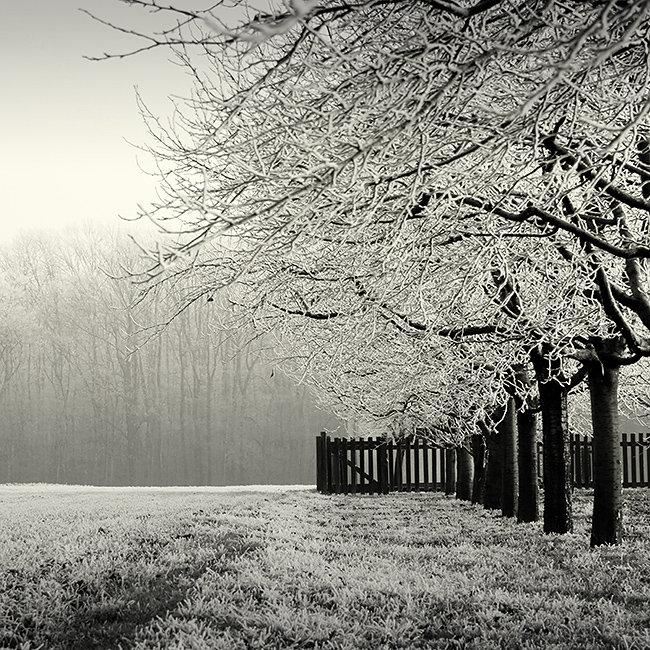 Black and White Photos… Photographer Vladimir Zivkovic