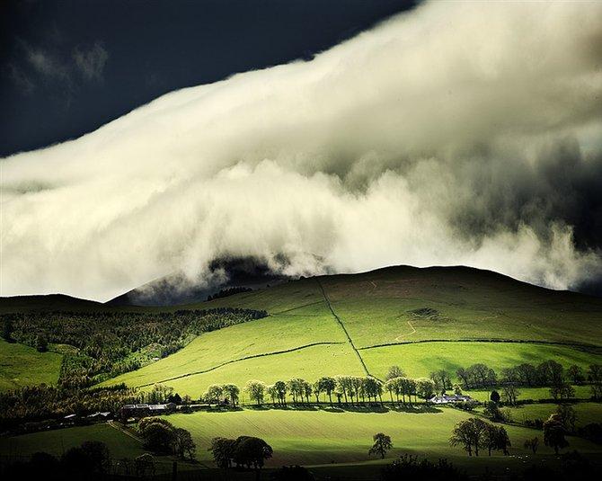 Nature… Photographer Craig Easton