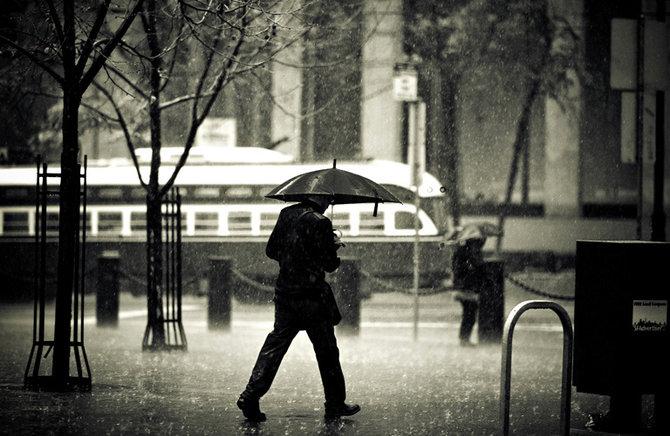 Rain… Phorographer Navid Baraty