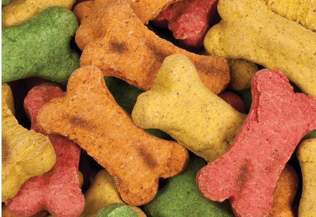 Dog Biscuits | 133 Homesteading Skills for Beginners