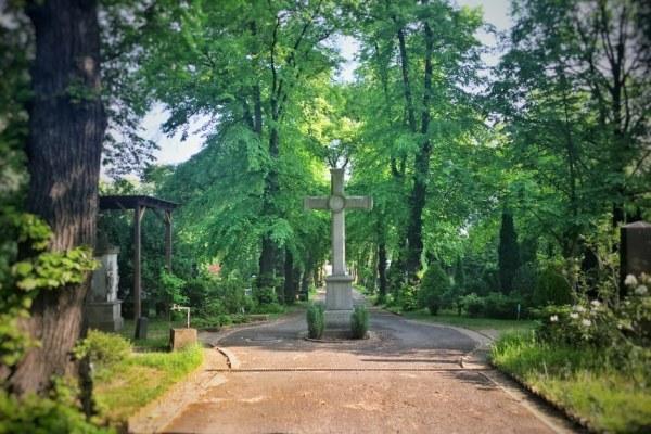Kreuz auf Friedhof_1 THING TO DO