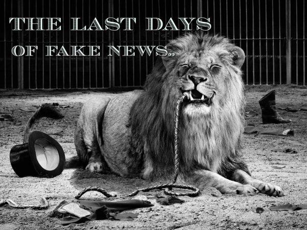 lion eaten