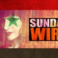Episode #180 – SUNDAY WIRE: 'Syria Under Fire' with guests Hanin Elias and Steven Sahiounie
