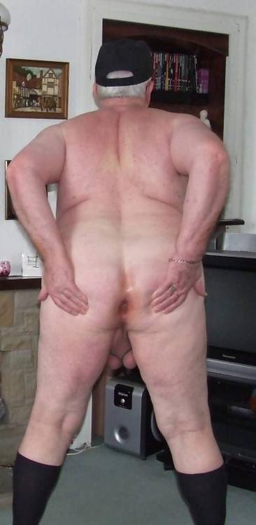 old fat bear daddy tumblr