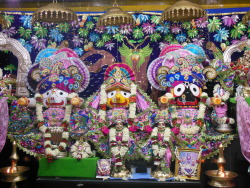 deity-darsana-at-iskcon-bangalore-sri-jagannath