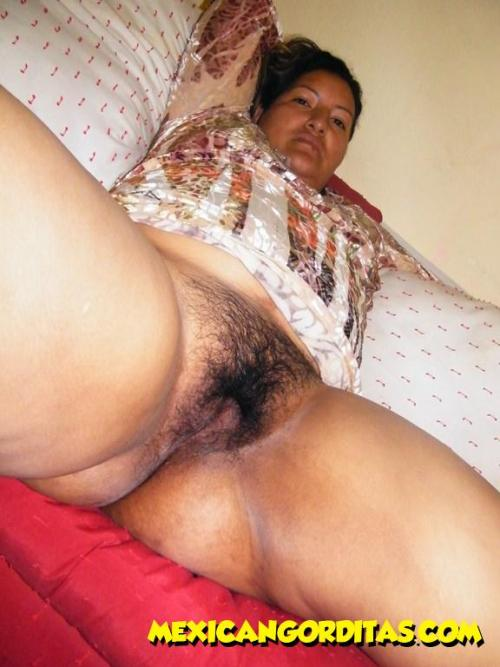 from mexican gorditas bbw