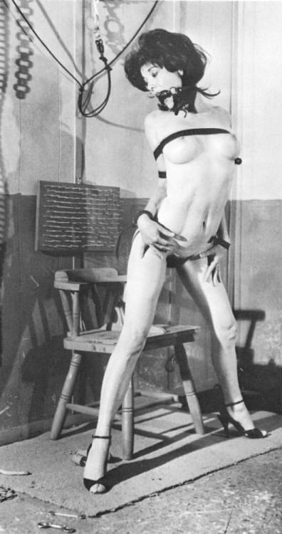 laurel blake bondage