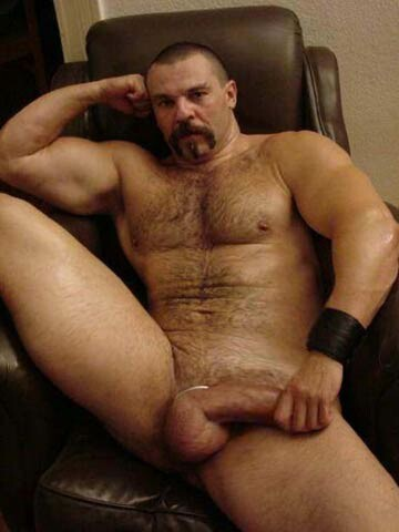 daddy bear dick
