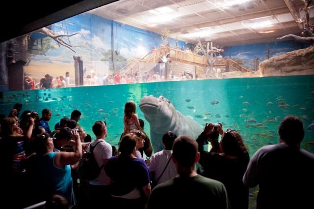 aquarium camden nj 12 notes timestamp tuesday 2012 07 10 15 38 07 nj