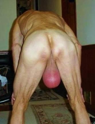 testicle pumping