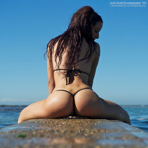 cruise ship wifes wicked weasel