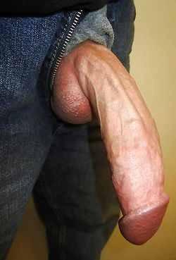 big hung cock