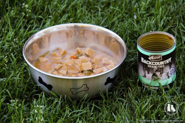 Merrick Venison Dog Food Review