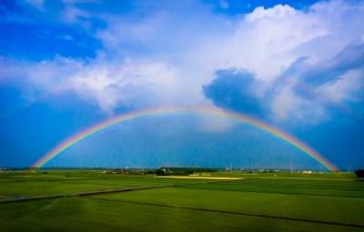 虹の根本を見たことあるかい(画像有)