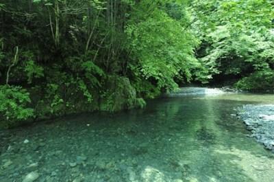 『川の人』 異世界に行ったかもしれないイッチの不思議な思い出話