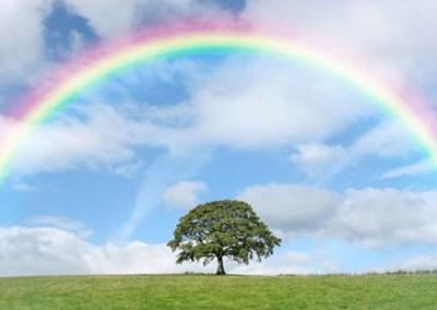 メキシコ人が作った虹の芸術に2ch民も感動絶賛 →画像