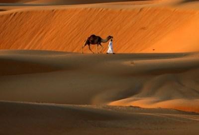 【画像】サハラ砂漠で雪