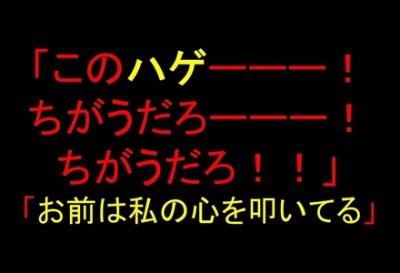 豊田真由子サマの名言で打線くんだwwwwww