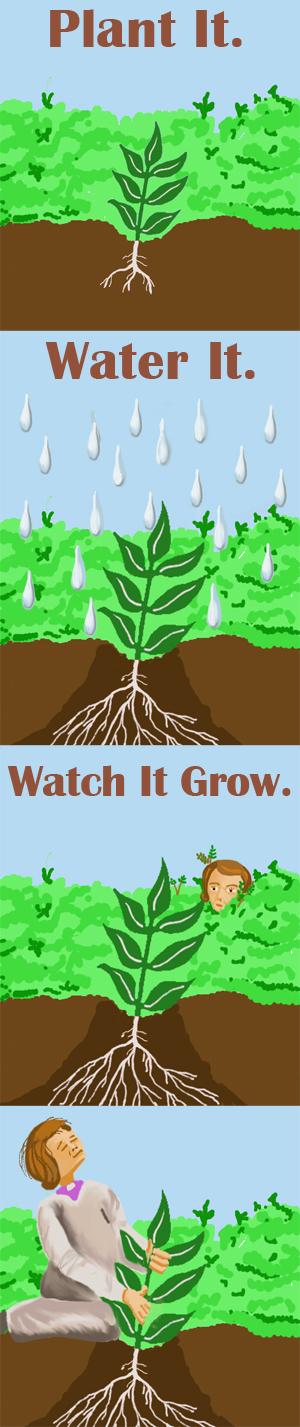 plant itweb