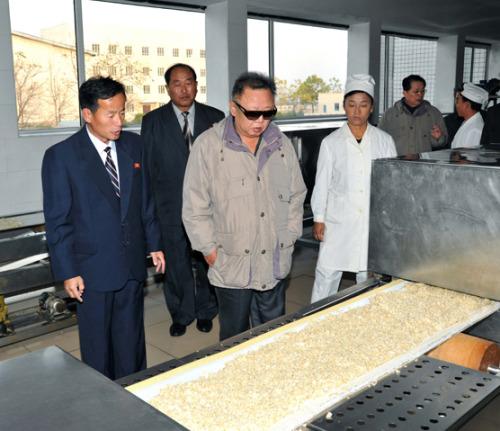 Der Diktator schaut sich Reis an