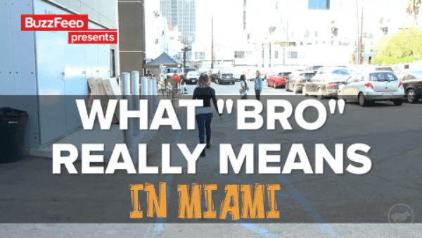 """What """"BRO"""" Really Means in Miami"""