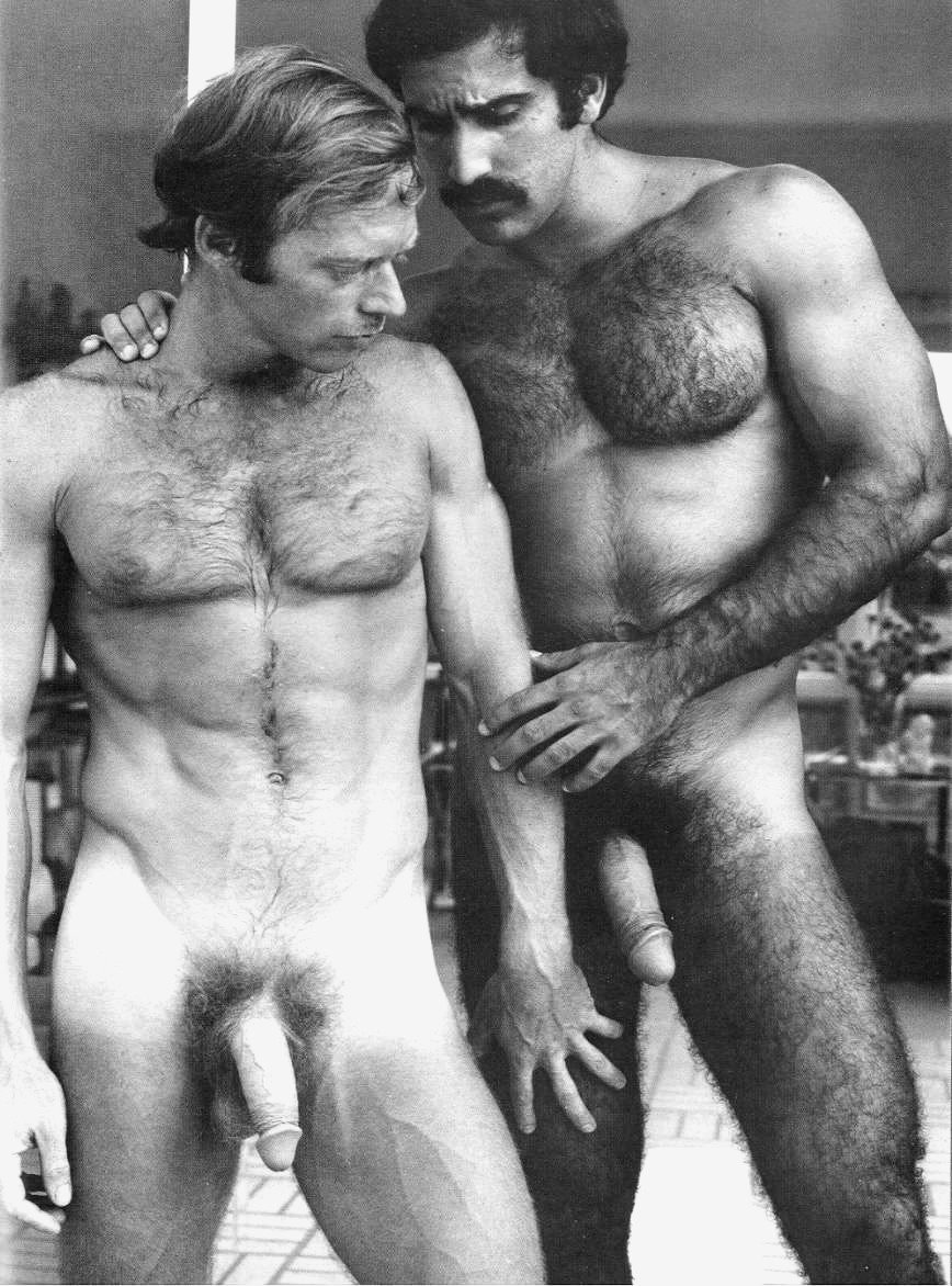 vintage gay porn twins