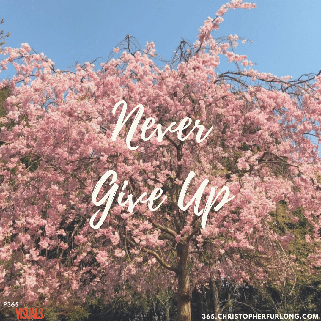 Day #115: Never Give Up