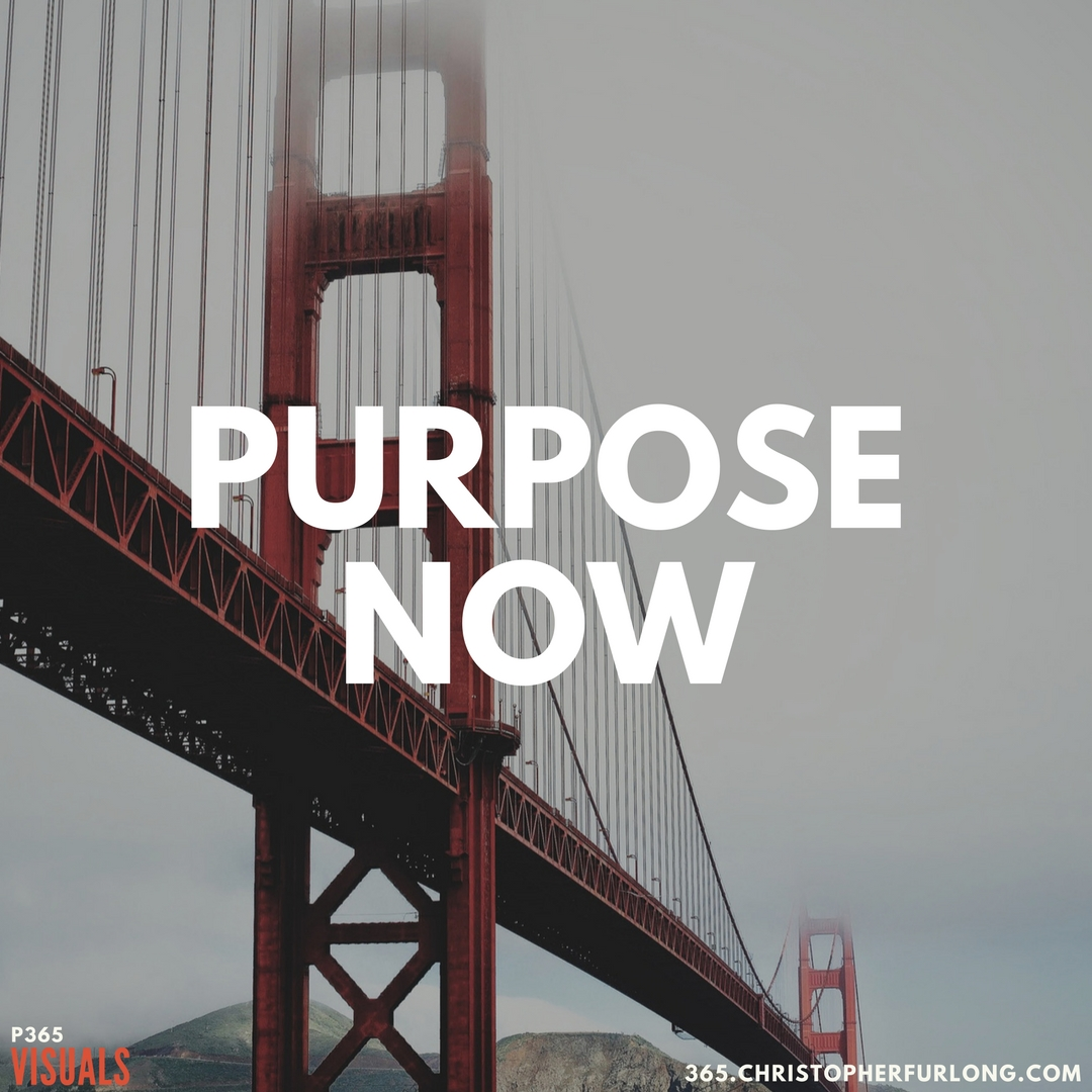 P365 2018: Day #027: Purpose Now