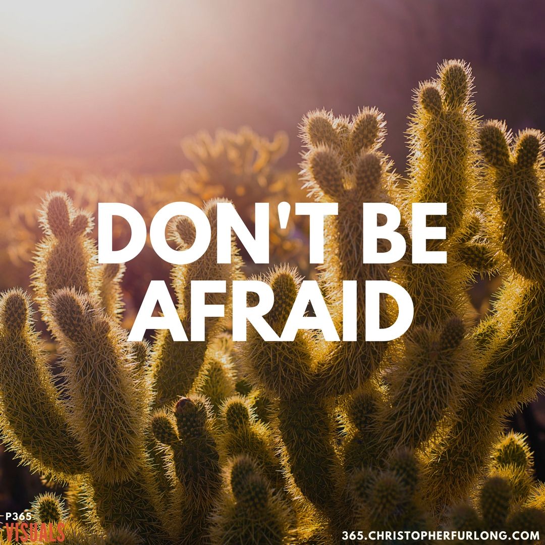 P365 2018: Day #038: Don't Be Afraid