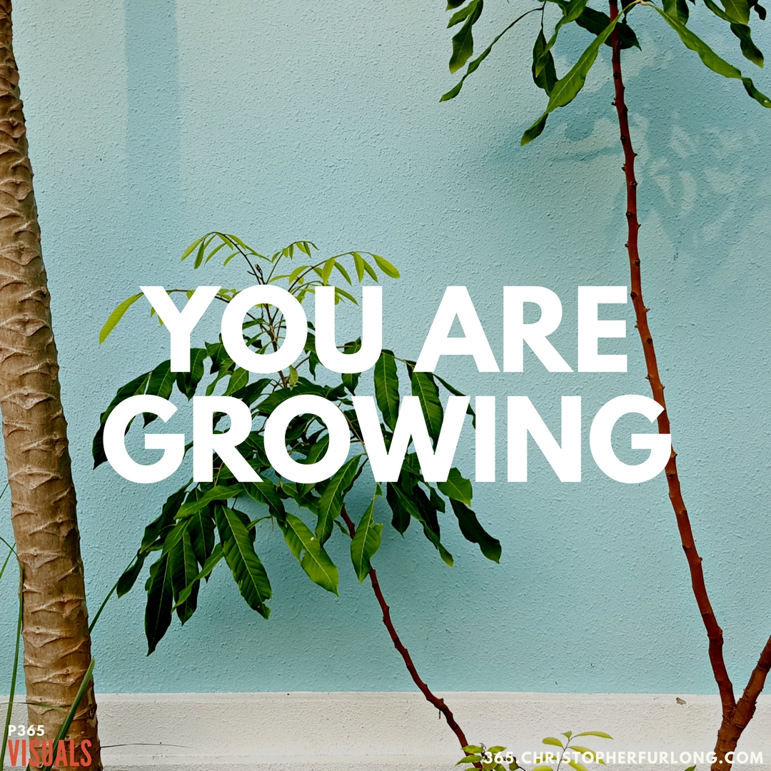 P365 2018: Day #120: You Are Growing