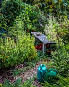 """""""A garden must combine the poetic and he mysterious with a feeling of serenity and joy."""" - Luis Barragan"""