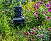 """""""I intend, before the endgame looms, to die sitting in a chair in my own garden with a glass of brandy in my hand."""" - Terry Pratchett"""