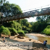 Morningside Nature Preserve in Morningside/Lenox Park