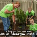 Friends of Georgia State Parks