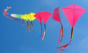 Community Kite Fly in Barrington, Illinois