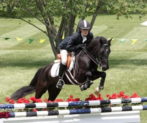Horse Trials in Barrington Hills